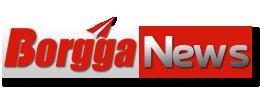 Borgga News